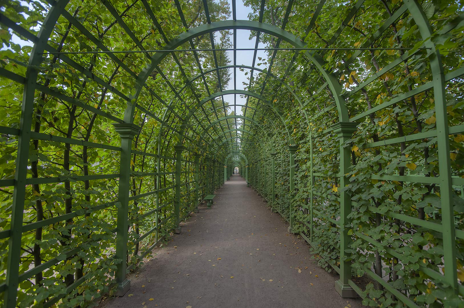 Arbor in Letny Sad (Summer Garden). St.Petersburg, Russia