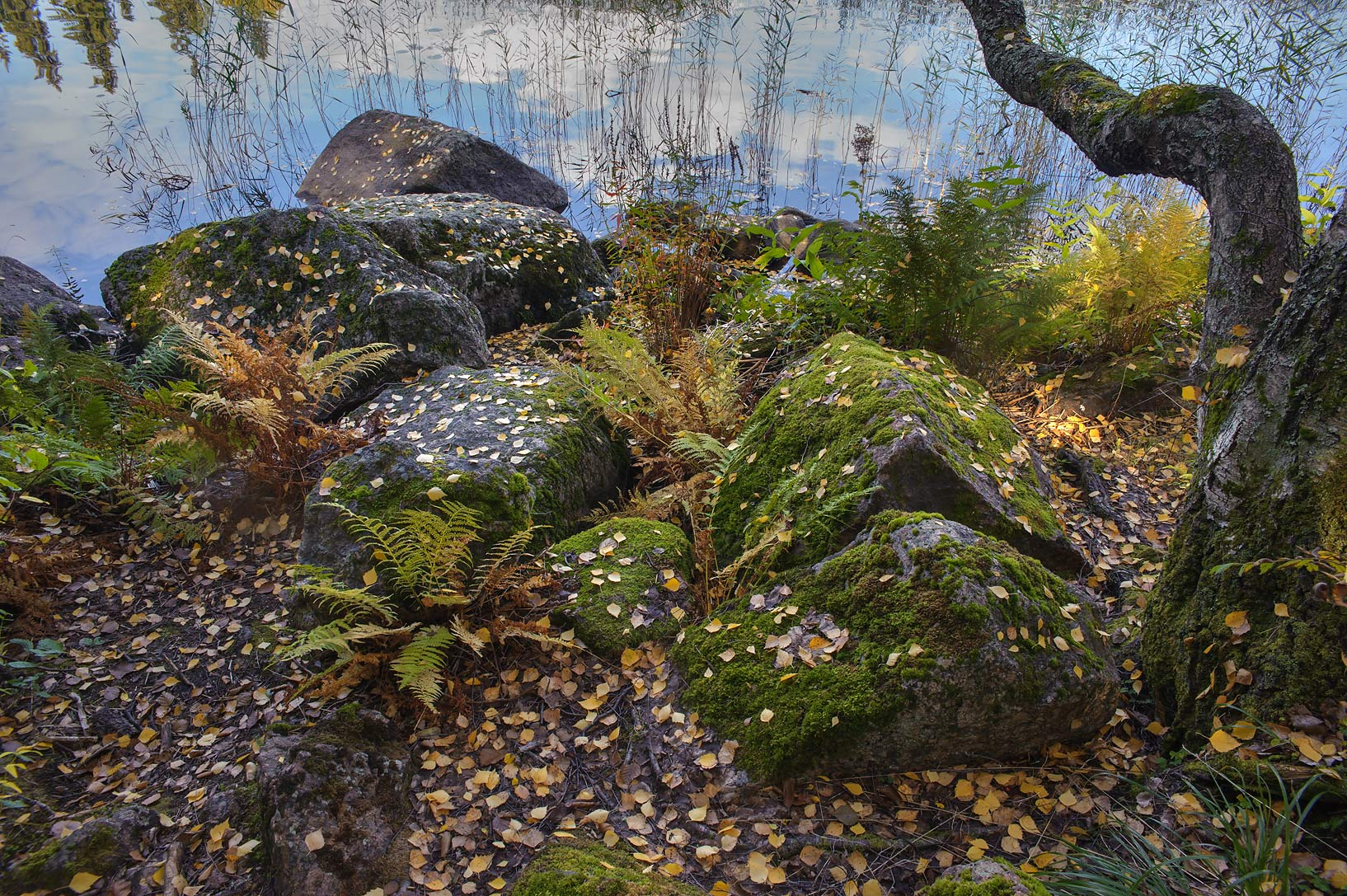 Rocky shore of Gulf of Finland in south area of Monrepo (Mon Repos) Park. Vyborg, Russia