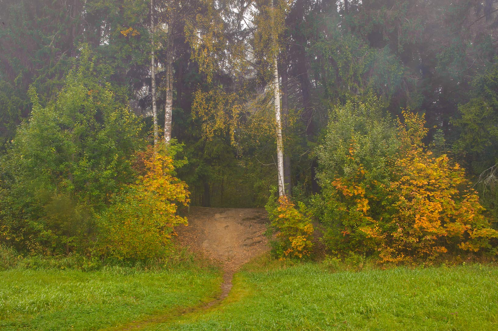 Trail in valley of Slavianka River in Pavlovsk...a suburb of St.Petersburg, Russia