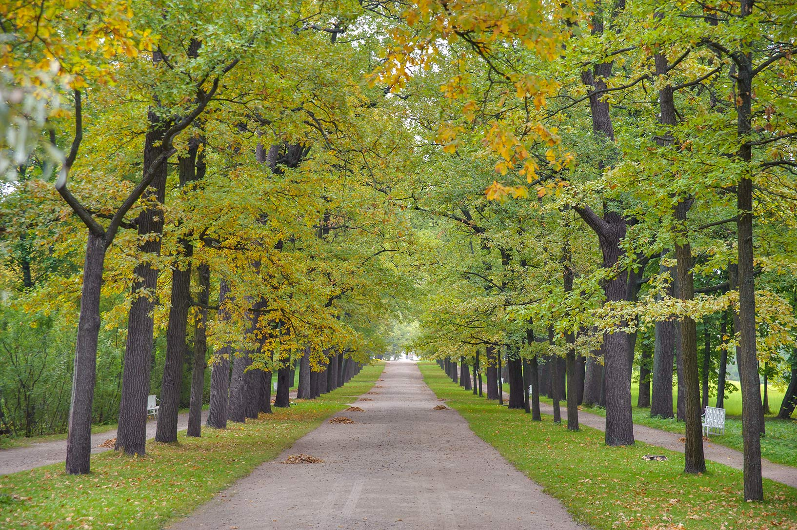 Rampovaya Alley in Catherine Park. Pushkin...Selo) near St.Petersburg, Russia