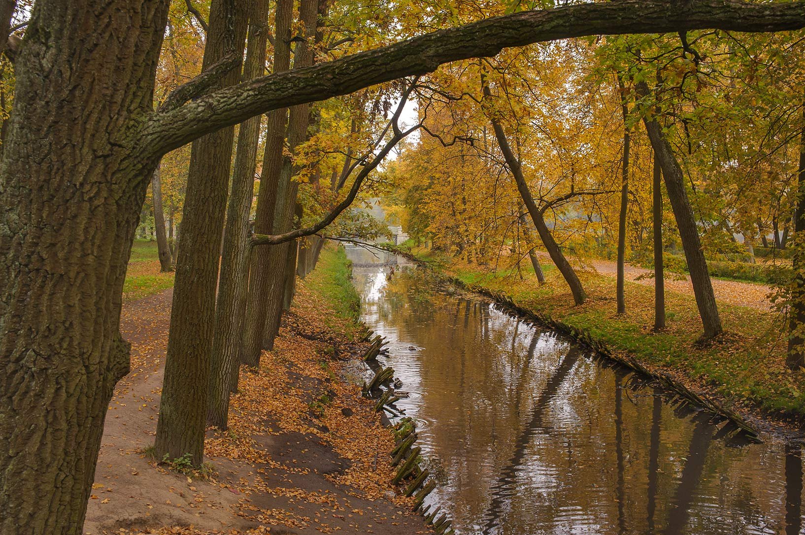 Canal of Lubvi Island near Beloe Lake in Gatchina, a suburb of St.Petersburg. Russia