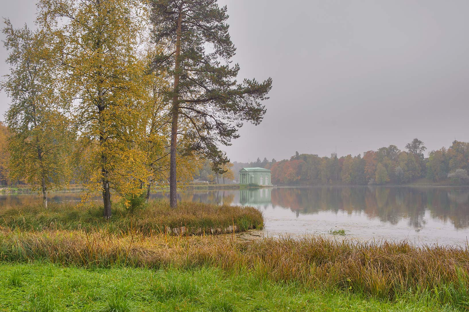 Pine Island of Beloe Lake in Gatchina, a suburb of St.Petersburg. Russia
