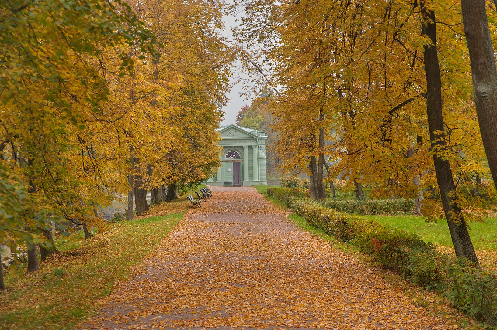 Linden alley leading to Venera Pavilion on Lubvi...a suburb of St.Petersburg. Russia