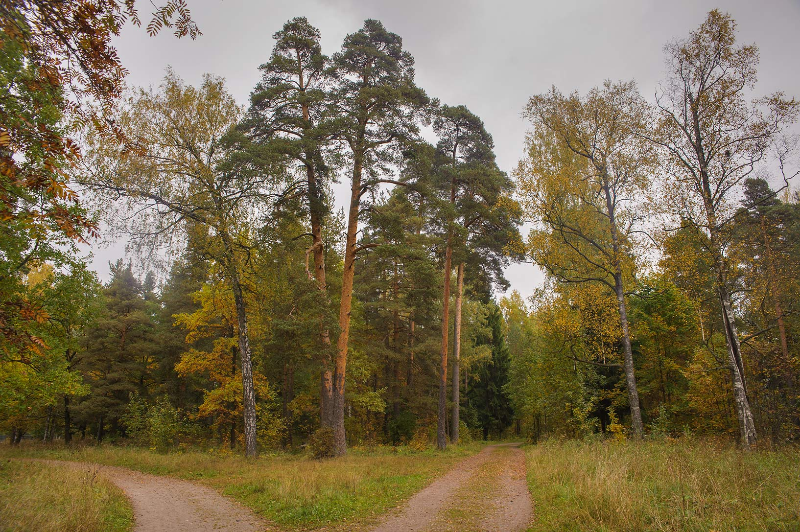 Roads north from the Farm (Ferma) in Gatchina, a suburb of St.Petersburg. Russia