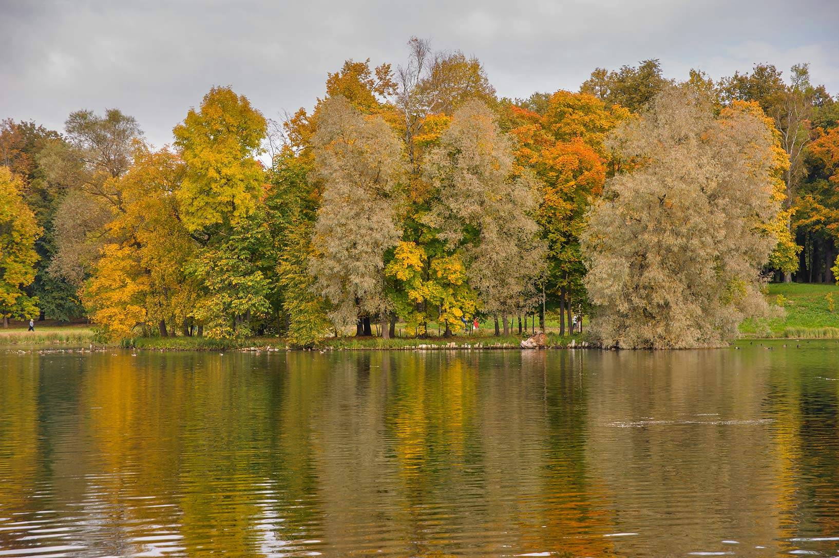 South part of Beloe Lake in Gatchina, a suburb of St.Petersburg. Russia