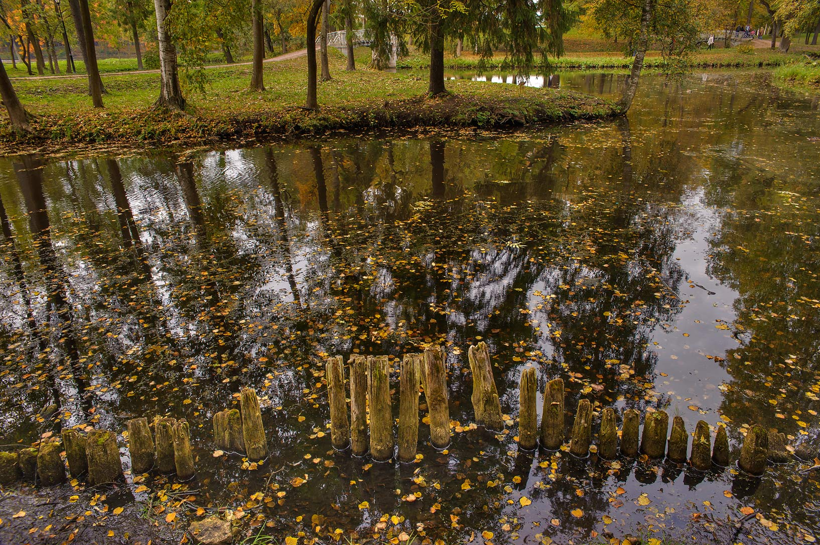 Pond of aquatic labyrinth in Gatchina, a suburb of St.Petersburg. Russia