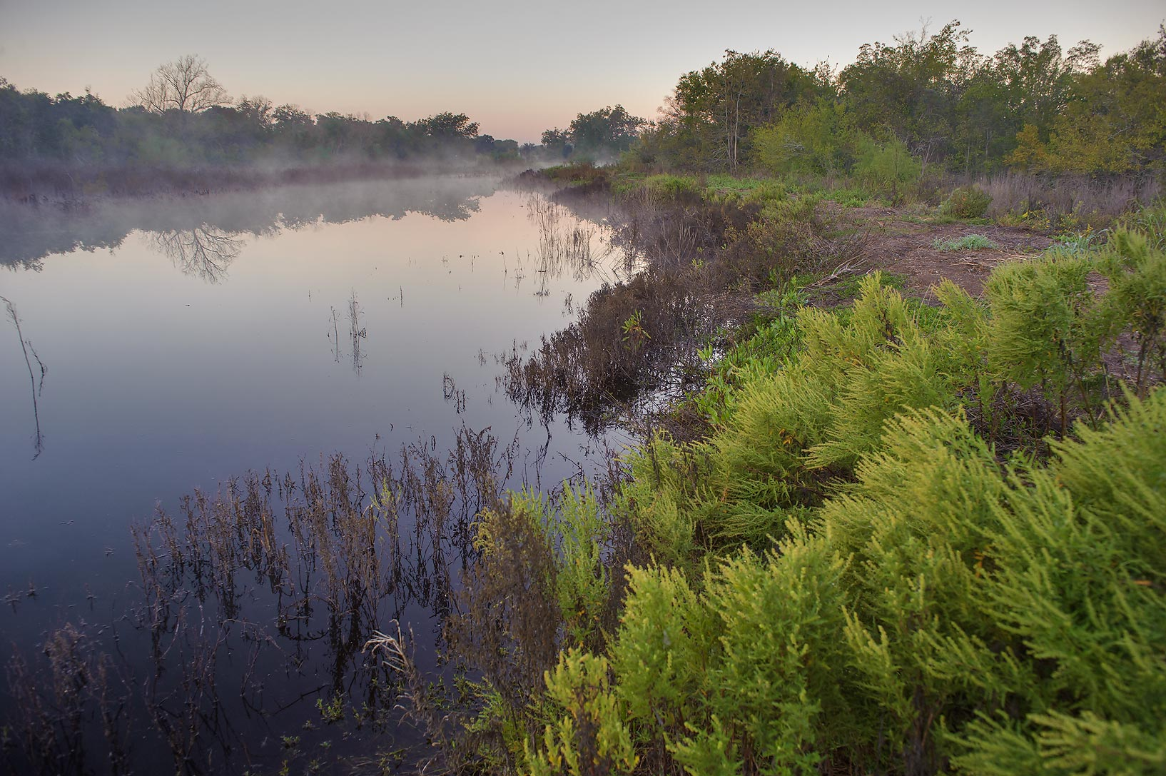 A pond in mist in Washington-on-the-Brazos State Historic Site. Washington, Texas