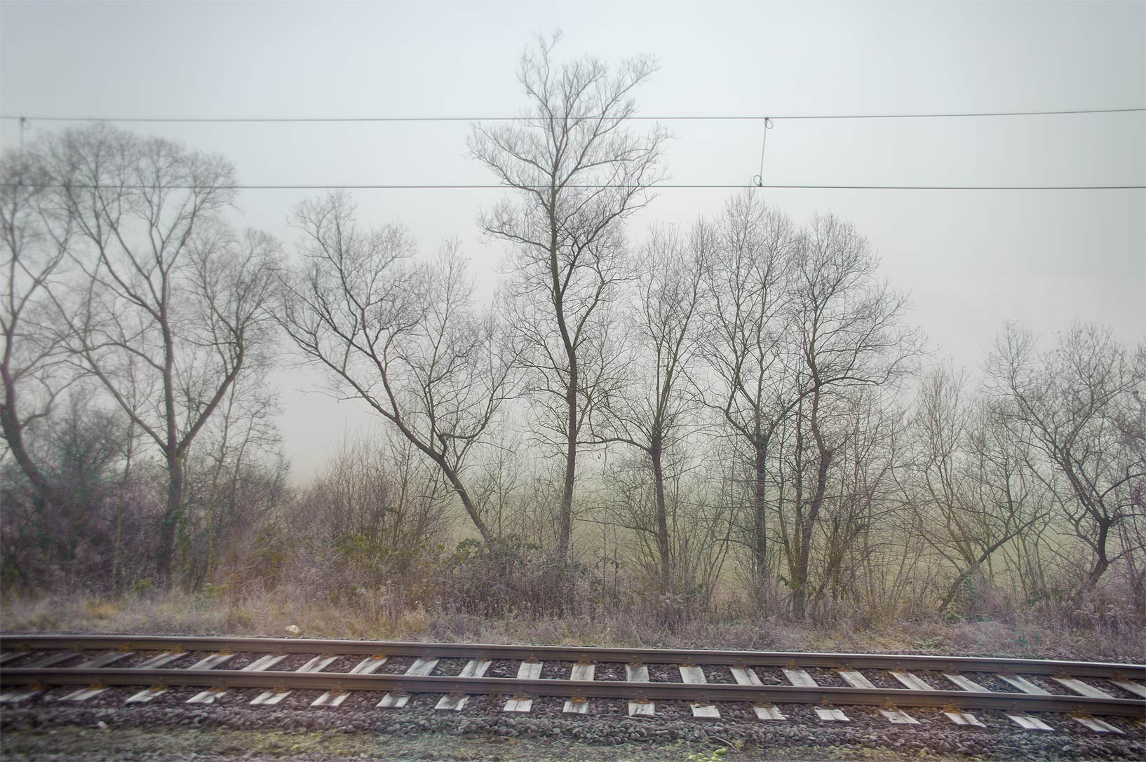 View from a train from Frankfurt to Gotha. Germany