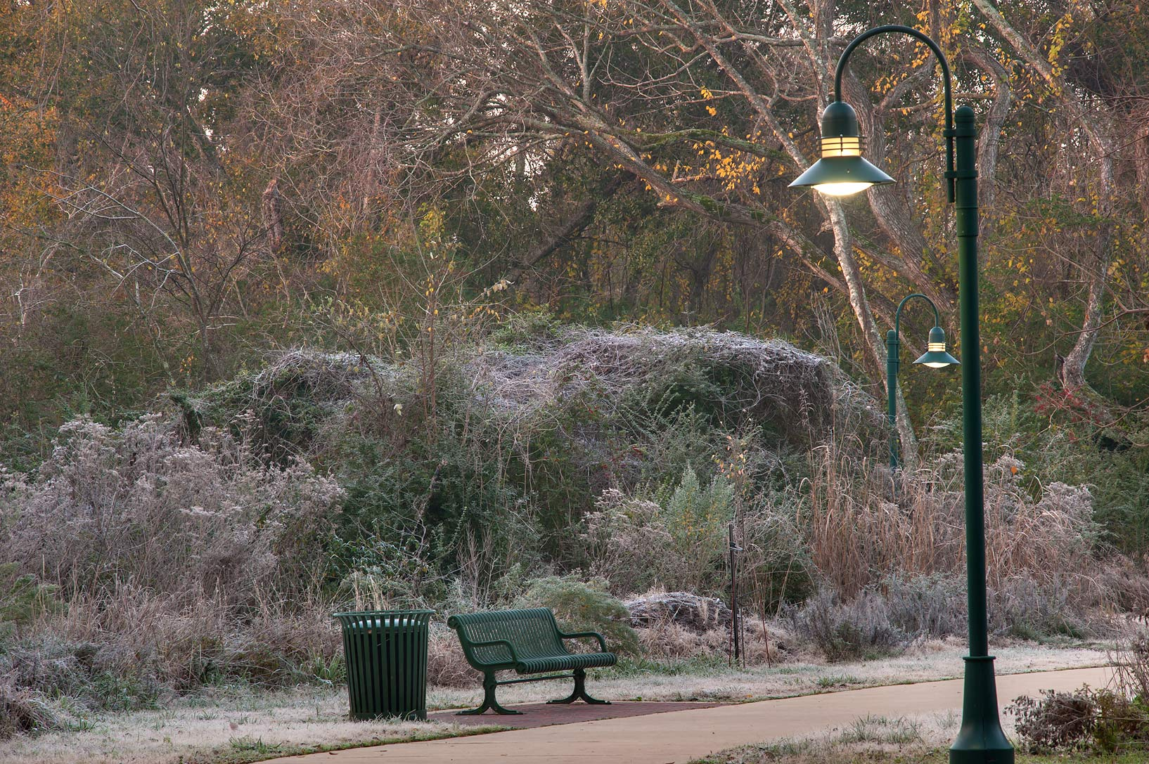 Morning freeze on Park Hudson Trail. Bryan, Texas