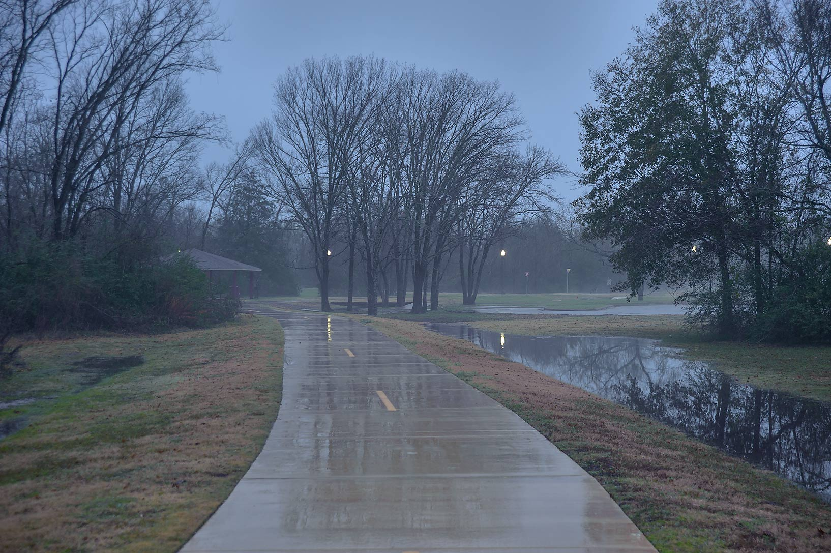 Rain on a trail in Bee Creek Park. College Station, Texas