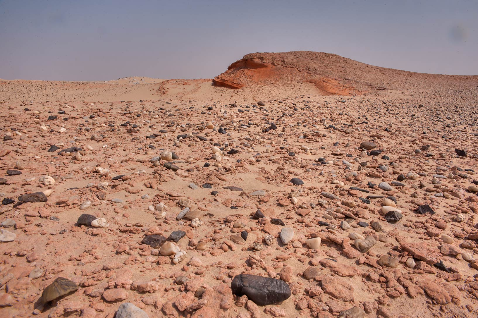 Pebbles covering lithified sand dune in area of Jebel Al-Nakhsh in south-western Qatar