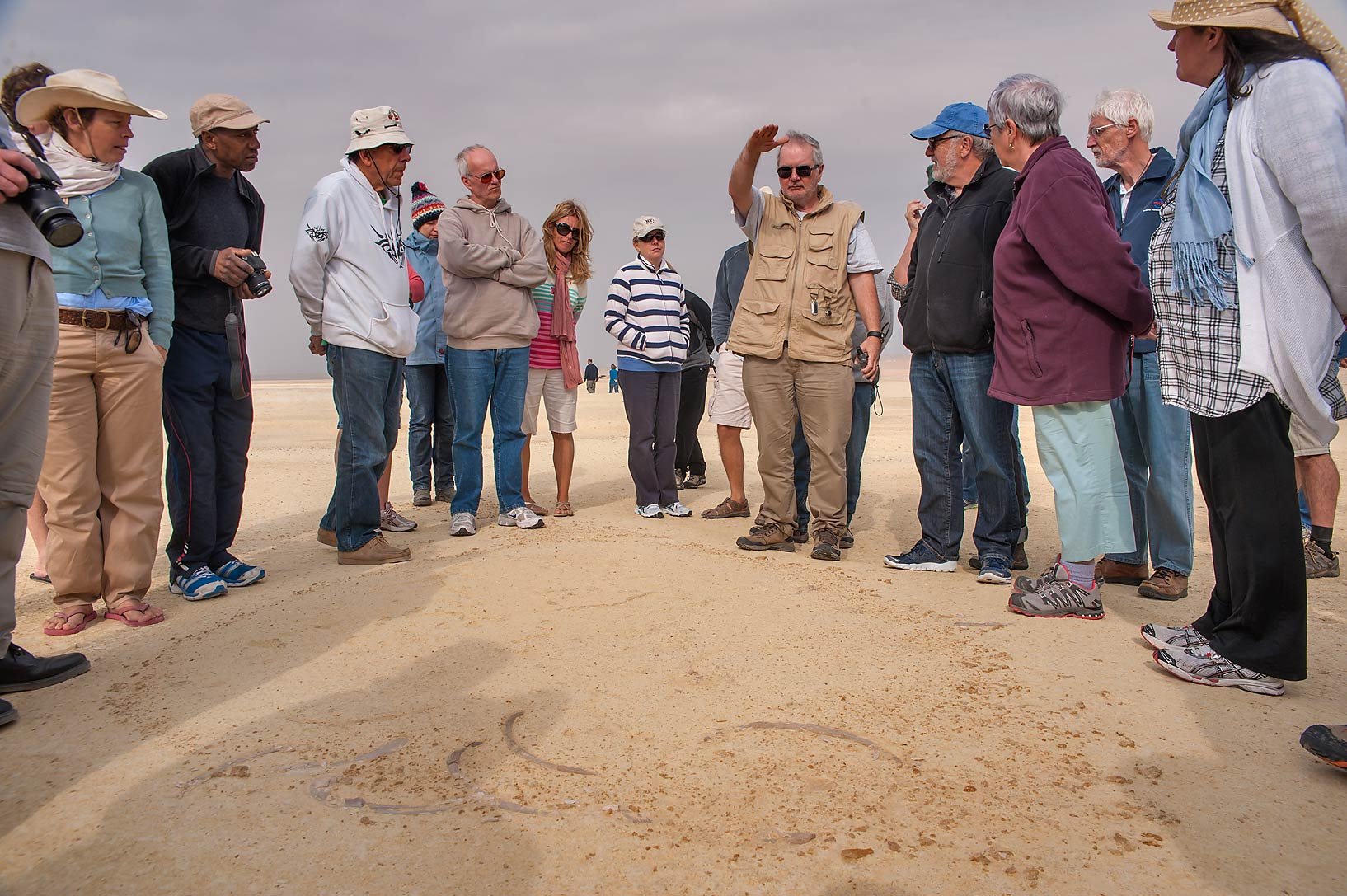 Qatar Natural History Group (QNHG) exploring...coastal sabkha in south-western Qatar