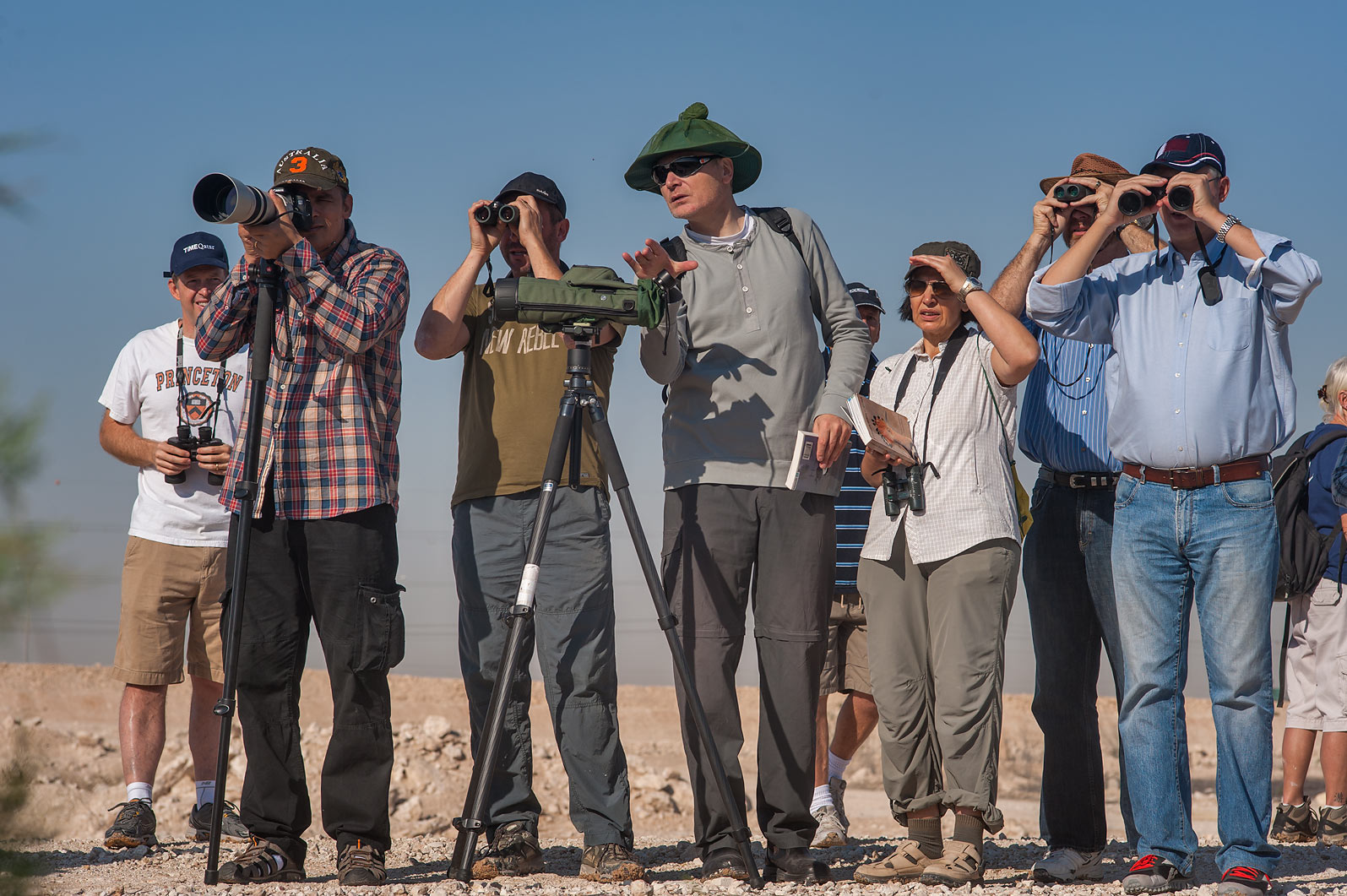 Watching birds with QNHG (Qatar Natural History...treatment ponds. Doha, Qatar