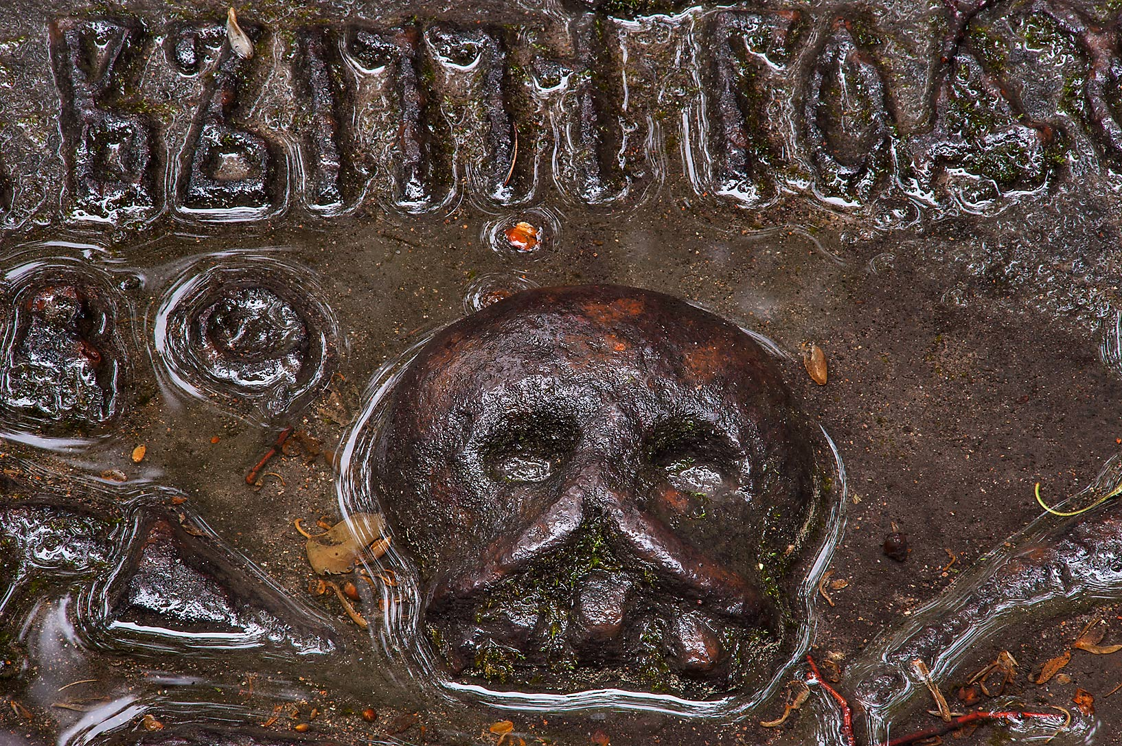 Iron skull on a tomb in Necropolis of Alexander...Cemetery). St.Petersburg, Russia