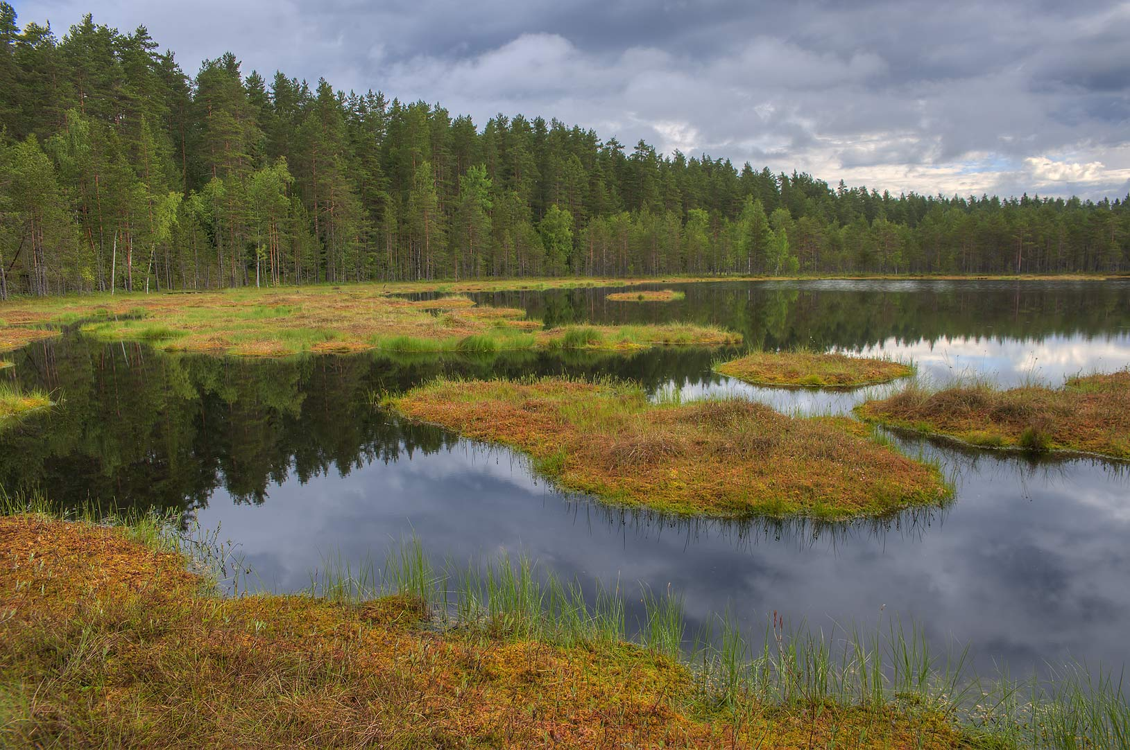 Dve Sestry Lake in Boloto Lammin-Suo swamp...north-west from St.Petersburg. Russia