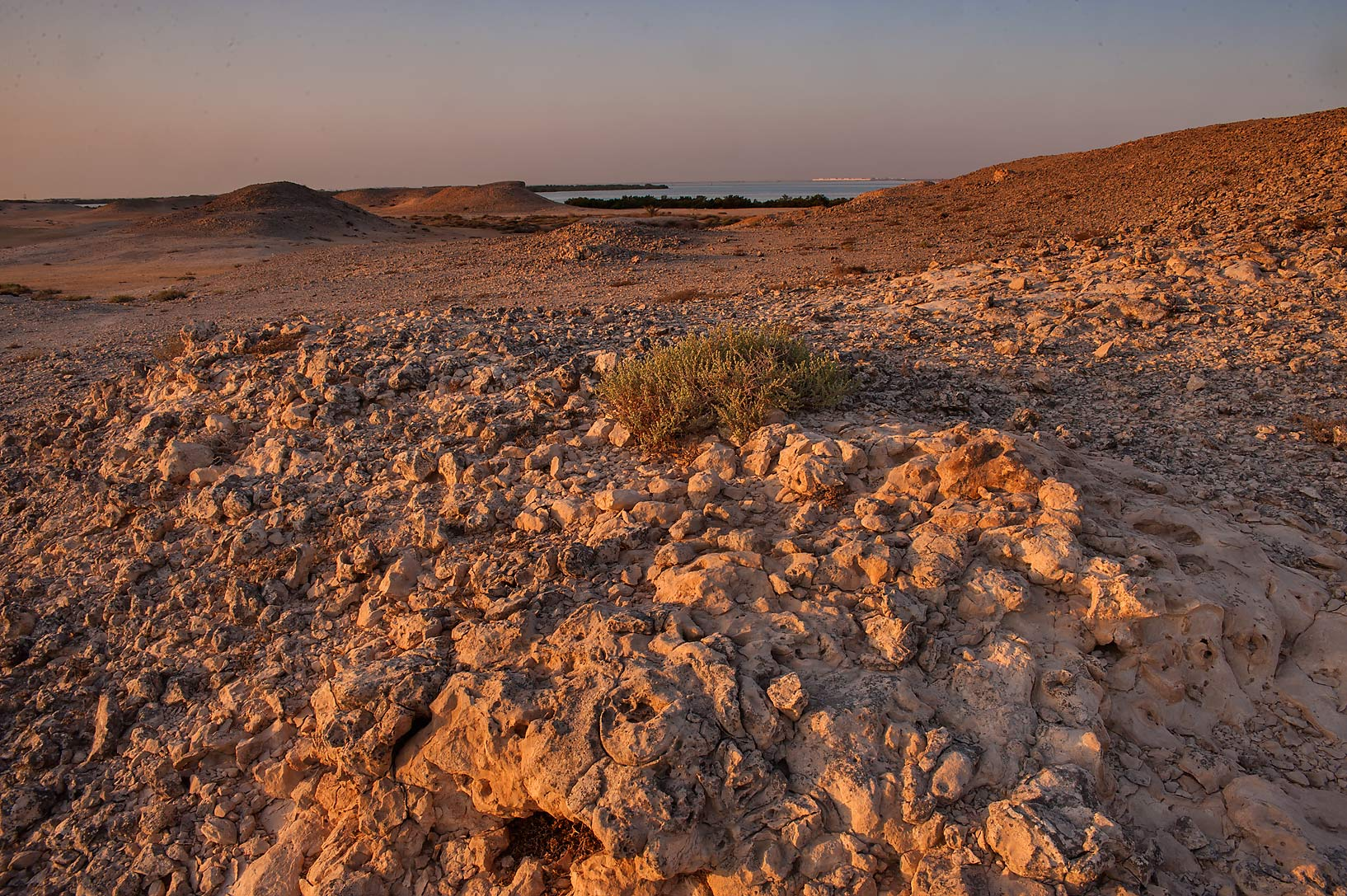 Hill at sunrise in Purple Island (Jazirat Bin Ghanim). Al Khor, Qatar