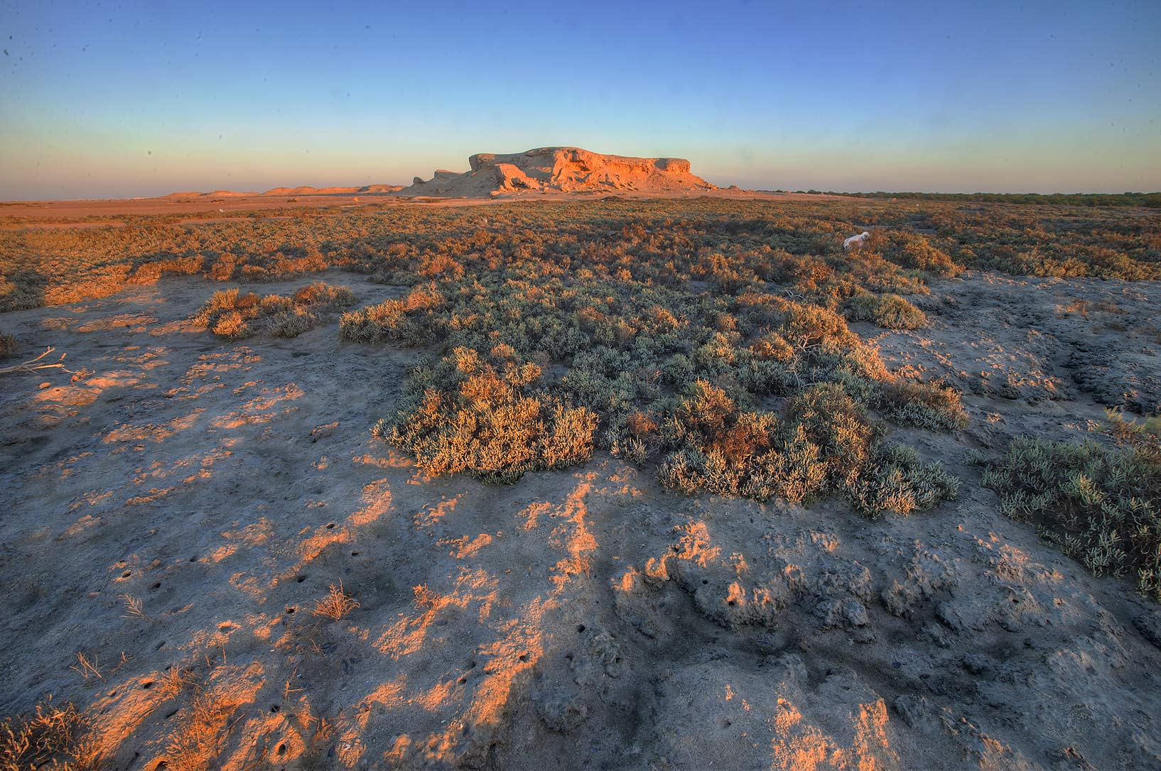 Salt marsh and cliffs of Purple Island (Jazirat Bin Ghanim) at sunrise. Al Khor, Qatar