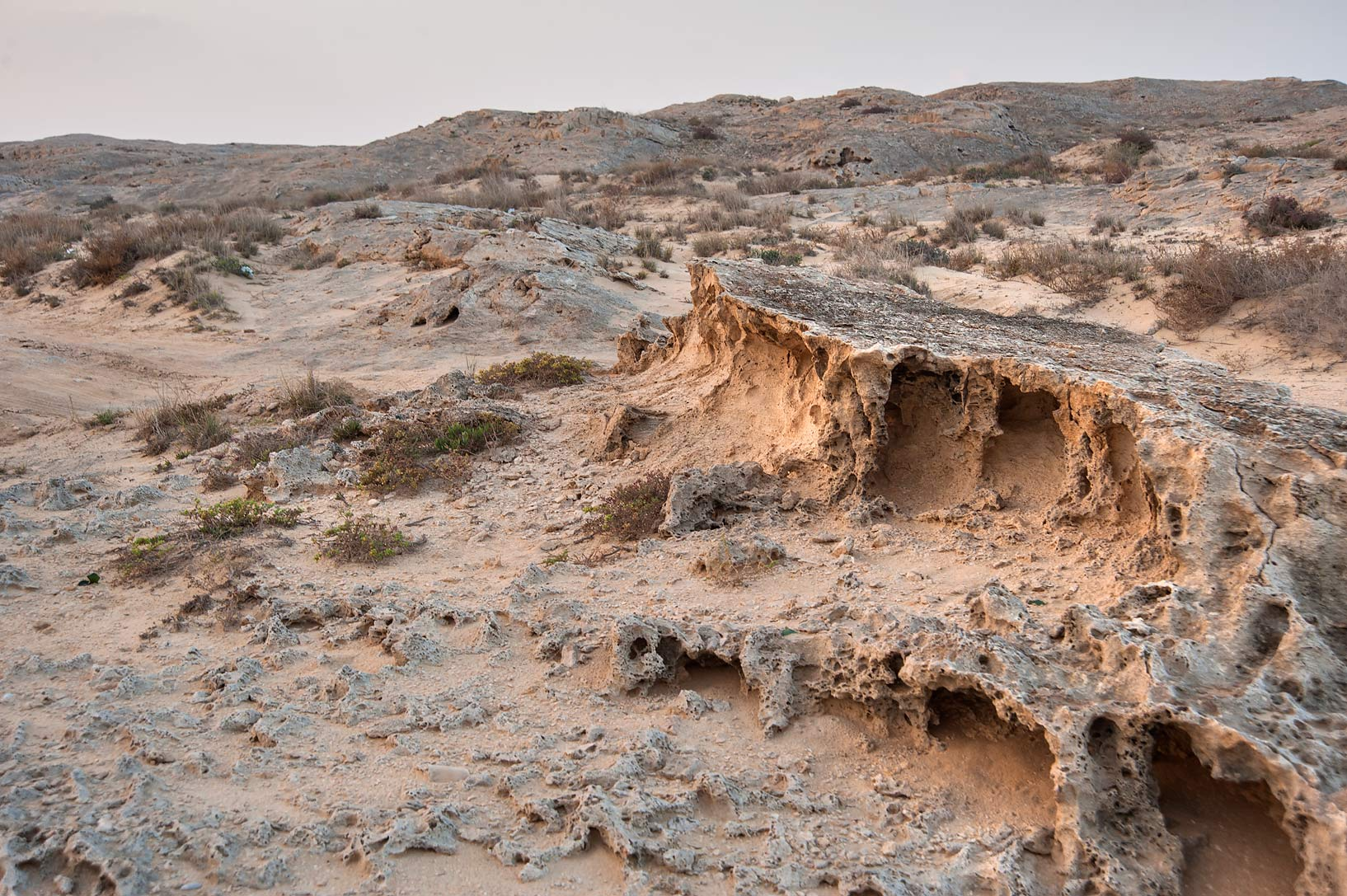 Surface of rocky ridge of Jebel Fuwairit. Northern Qatar