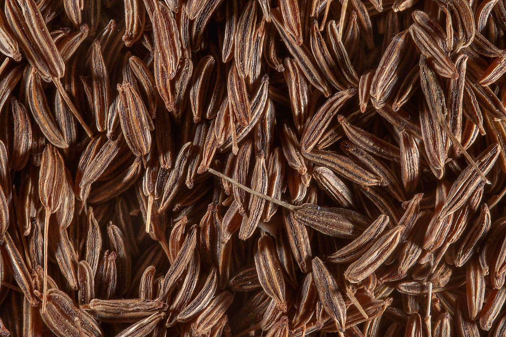 Cumin seeds (Cuminum cyminum) for sale in spice...Souq Waqif (Old Market). Doha, Qatar