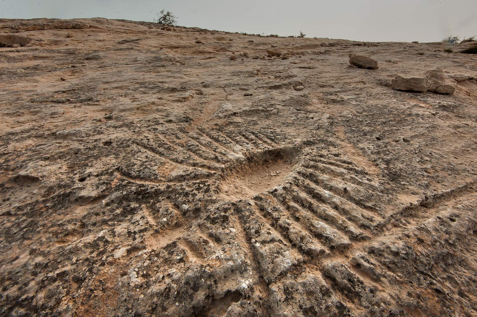 Photo rock carvings stone engravings