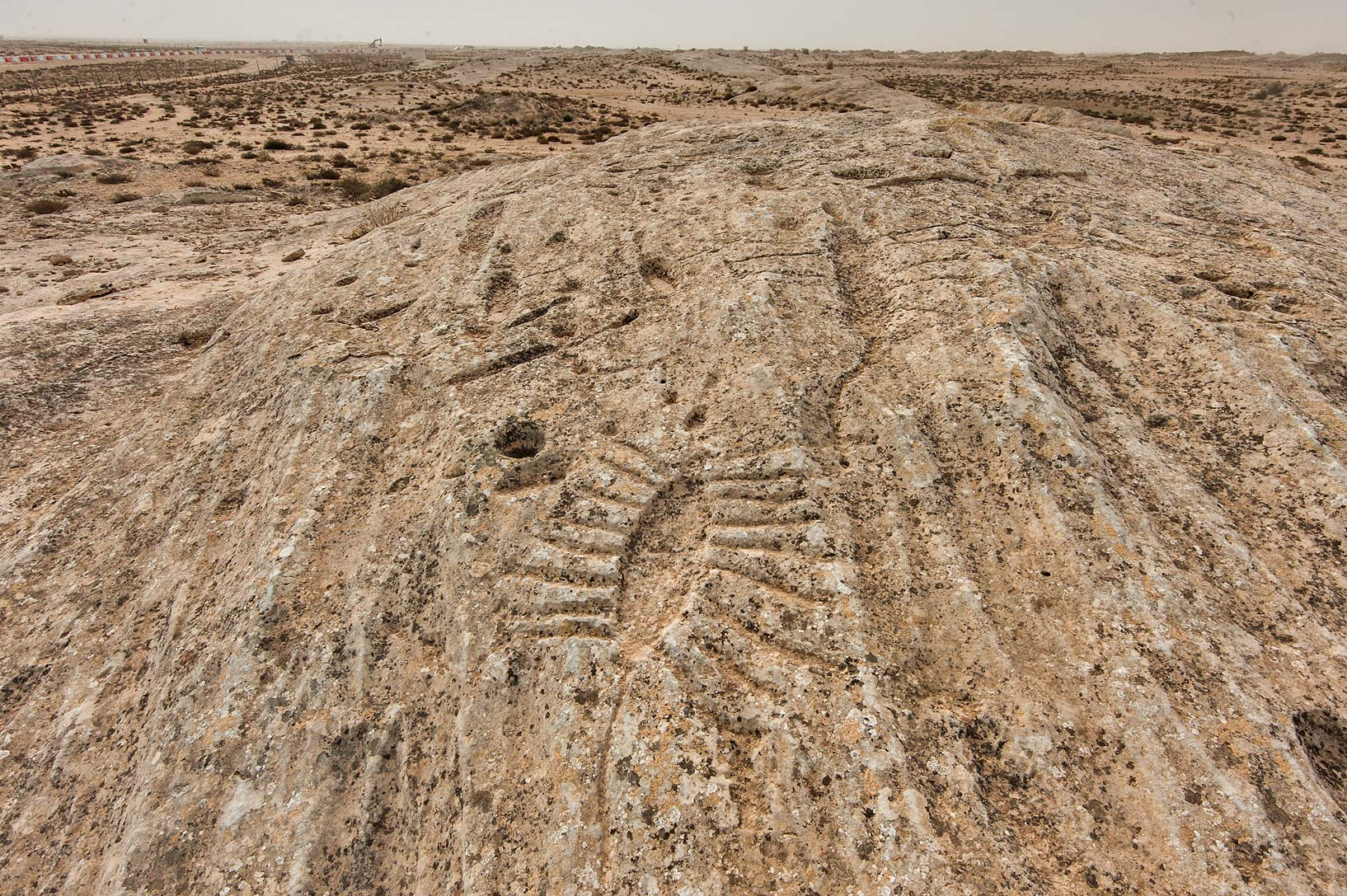 Rock carvings (stone engravings, petroglyphs) on...site, on north-eastern coast. Qatar