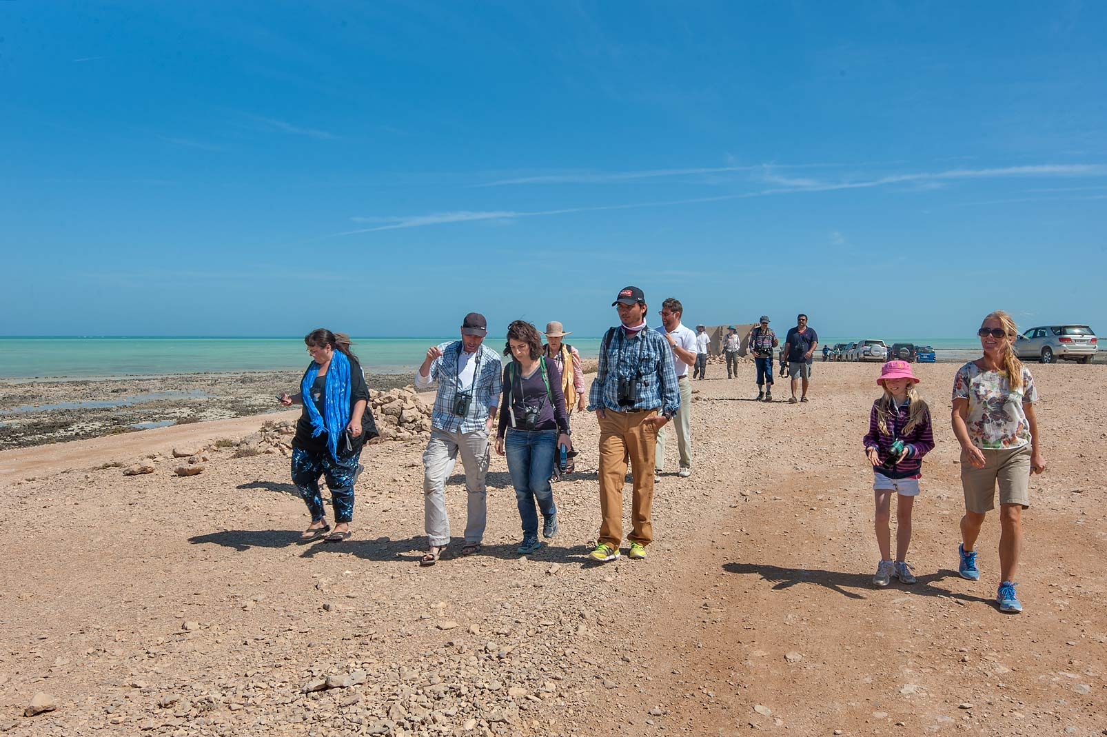 QNHG (Qatar Natural History Group) heading to...peninsula. Ruwais, Northern Qatar