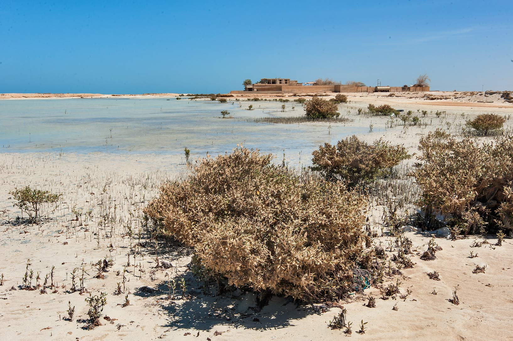 Dusty lagoon in Khasooma area. Ruwais, Northern Qatar
