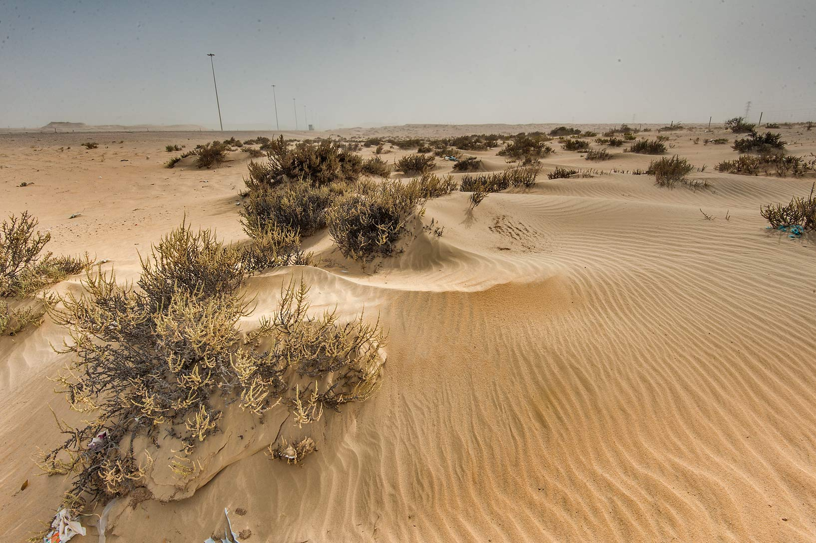Windblown sand on roadside of Salwa Rd. in area of Rawdat Ekdaim. Southern Qatar