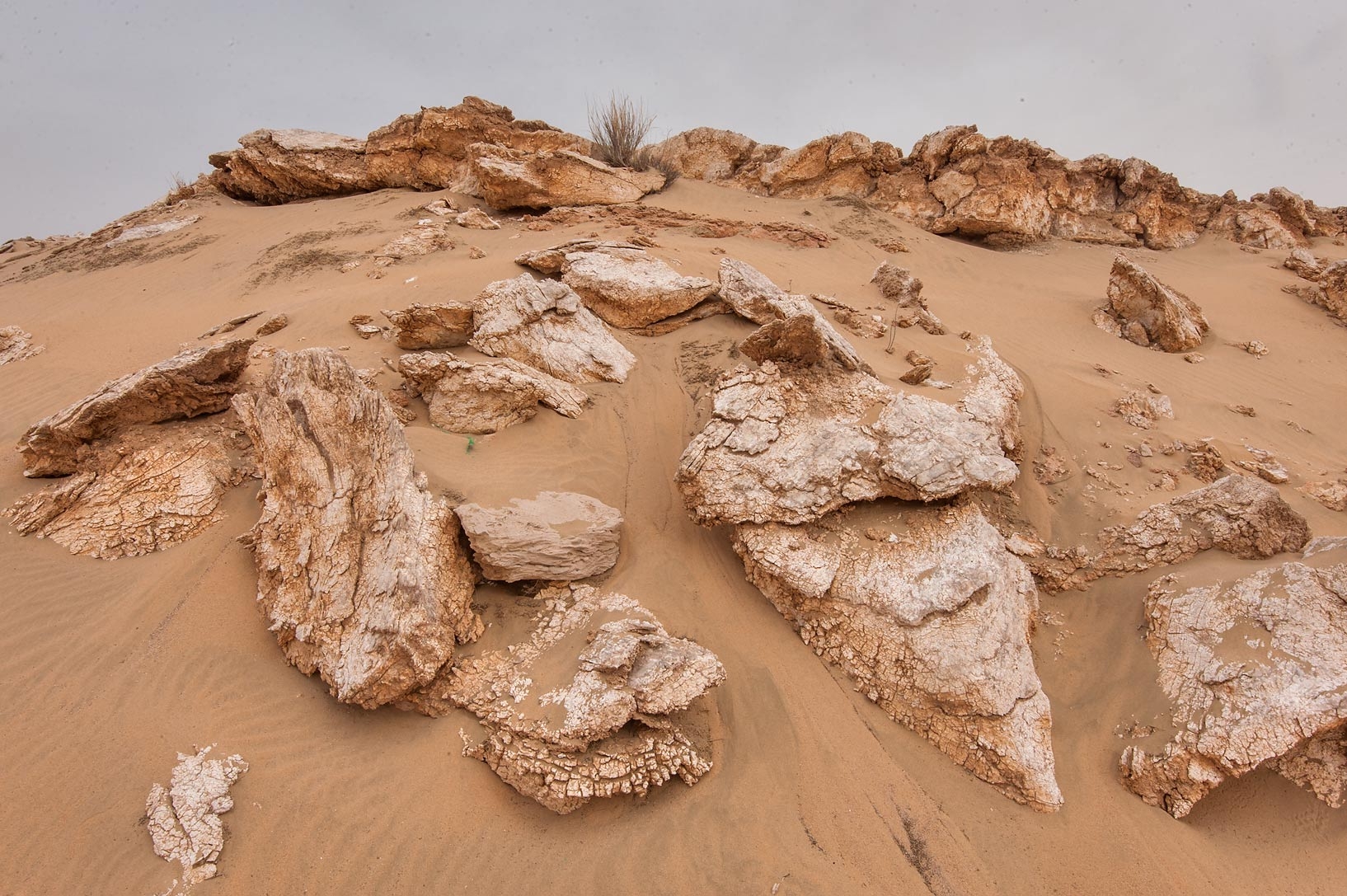 Gypsum rocks (selenite) in area of Nakhsh Mountain near Salwa Rd. in southern Qatar