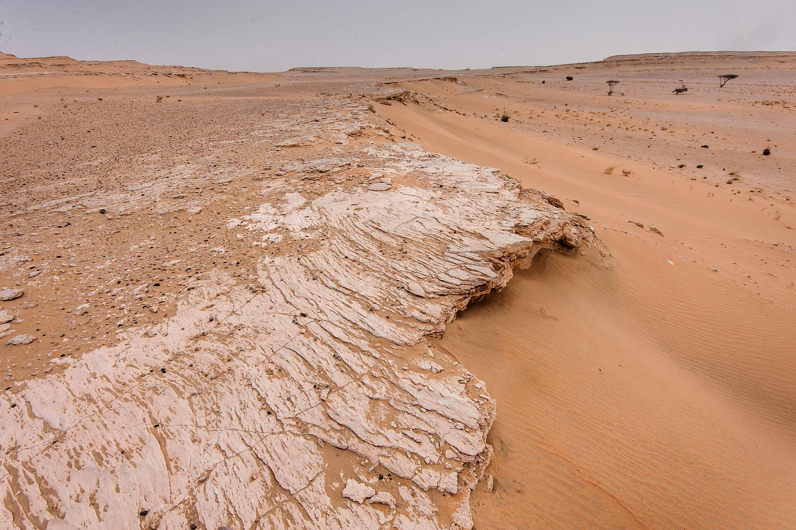 Wind abrasion of limestone cliffs in area of...near Salwa Rd. in southern Qatar
