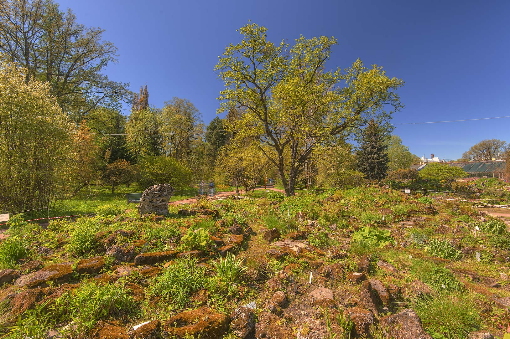 Photo 1596 12 Alpine Hill In Botanic Gardens Of Komarov Botanical Institute St Petersburg Russia