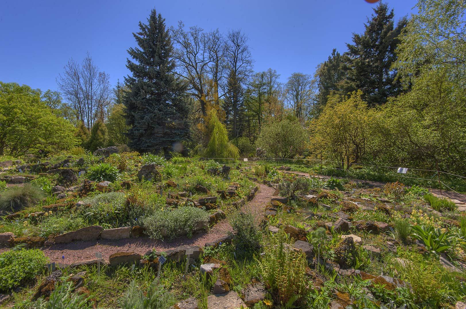 Photo 1596 13 Alpine Hill Near A Greenhouse In Botanic Gardens Institute St Petersburg Russia