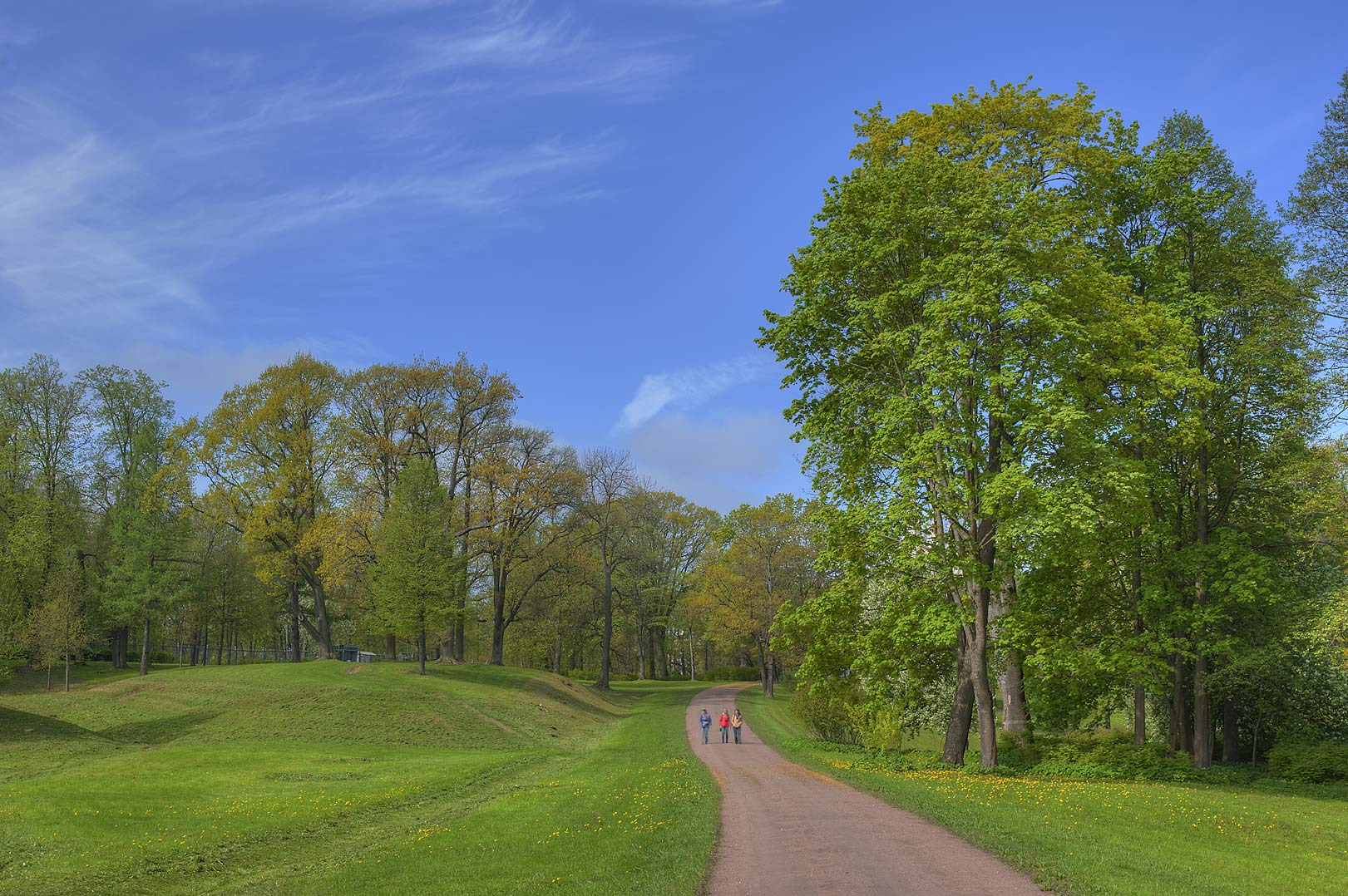 Road in Alexandria Park in Peterhof, west from St.Petersburg. Russia
