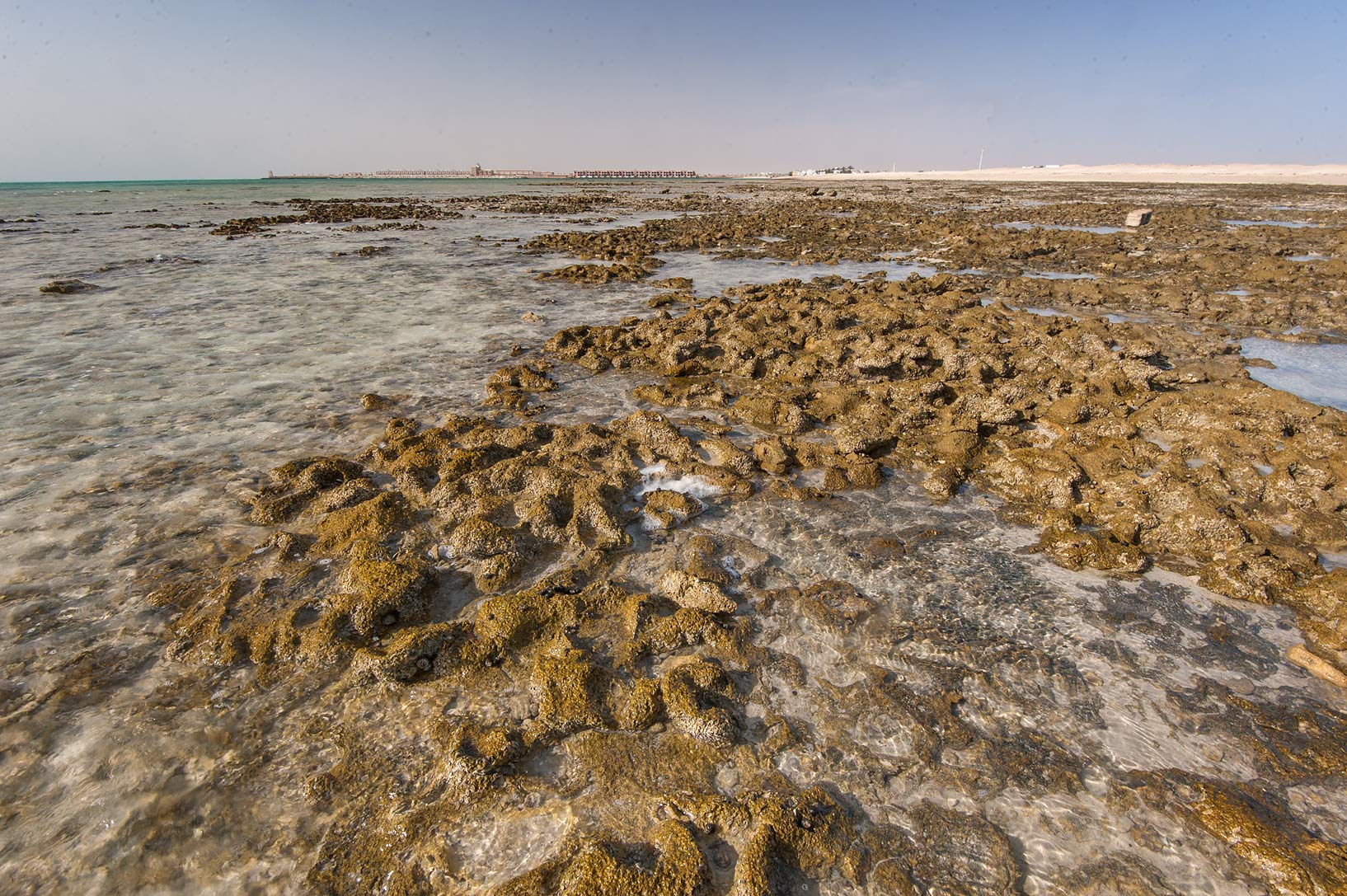 Beachrock near Al Ghariyah on north-eastern coast, Ash Shamal area. Qatar