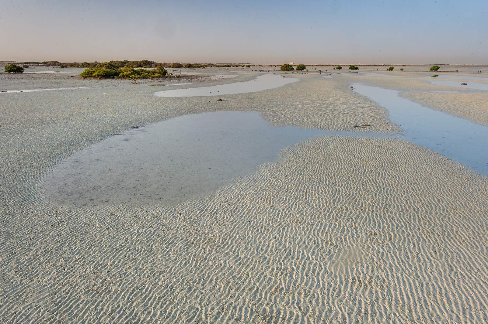 Tidal flats near a village of Al Jumail (Jumayl) west of Ruwais. Northern Qatar