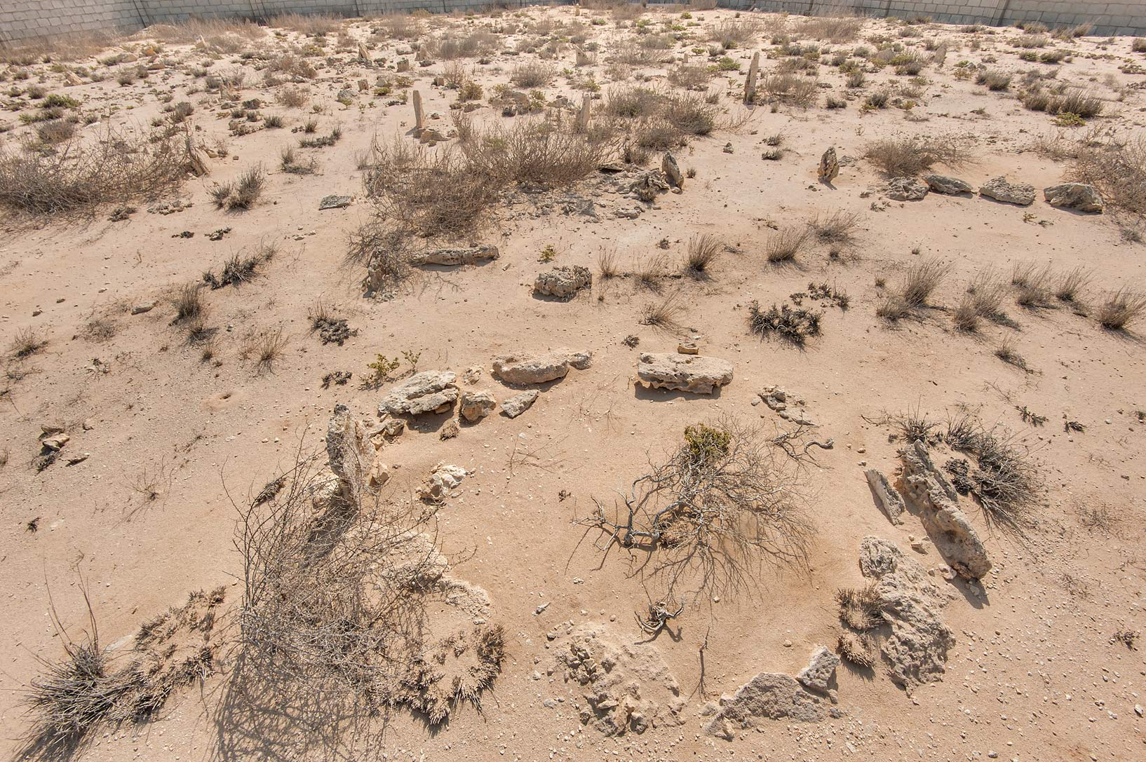 Tombs in a cemetery of a fishing village of Al...coast in Madinat Al Shamal area. Qatar