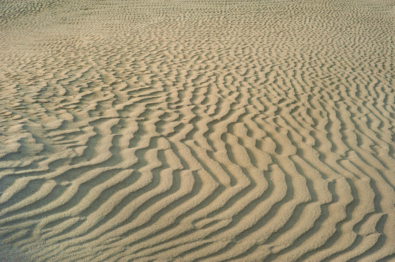 Sand ripples after windy weather near Sealine...view to north-west. Southern Qatar