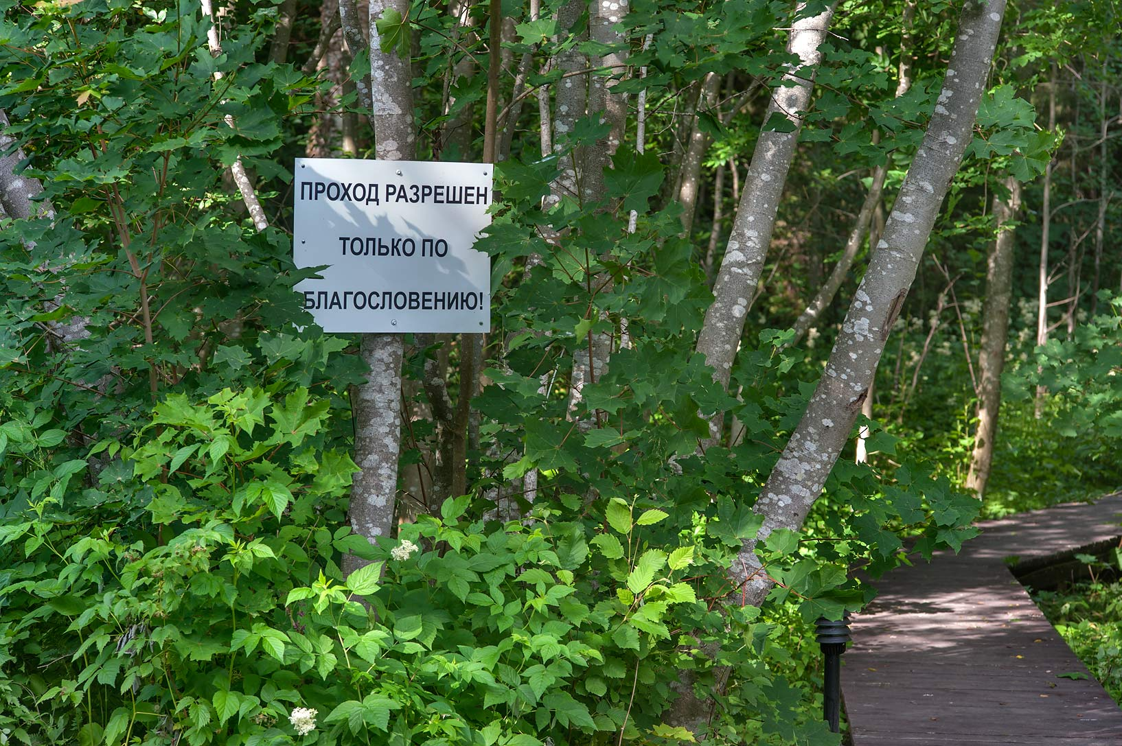 "Warning ""Entrance only for Blessed"" in a forest...Valaam Island. Karelia Region, Russia"