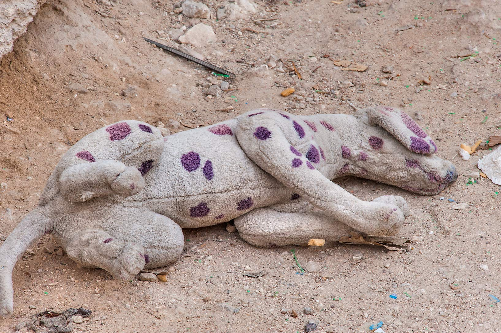 Thrown away Dalmatian soft toy (plush dog) in an...Musheirib (Msheireb) area. Doha, Qatar