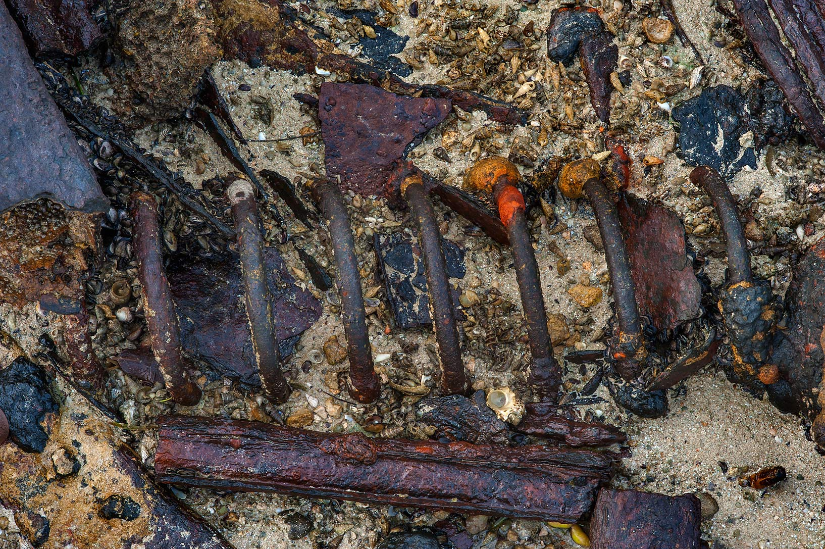 Rusty spring from a car at low tide Purple Island (Jazirat Bin Ghanim). Al Khor, Qatar