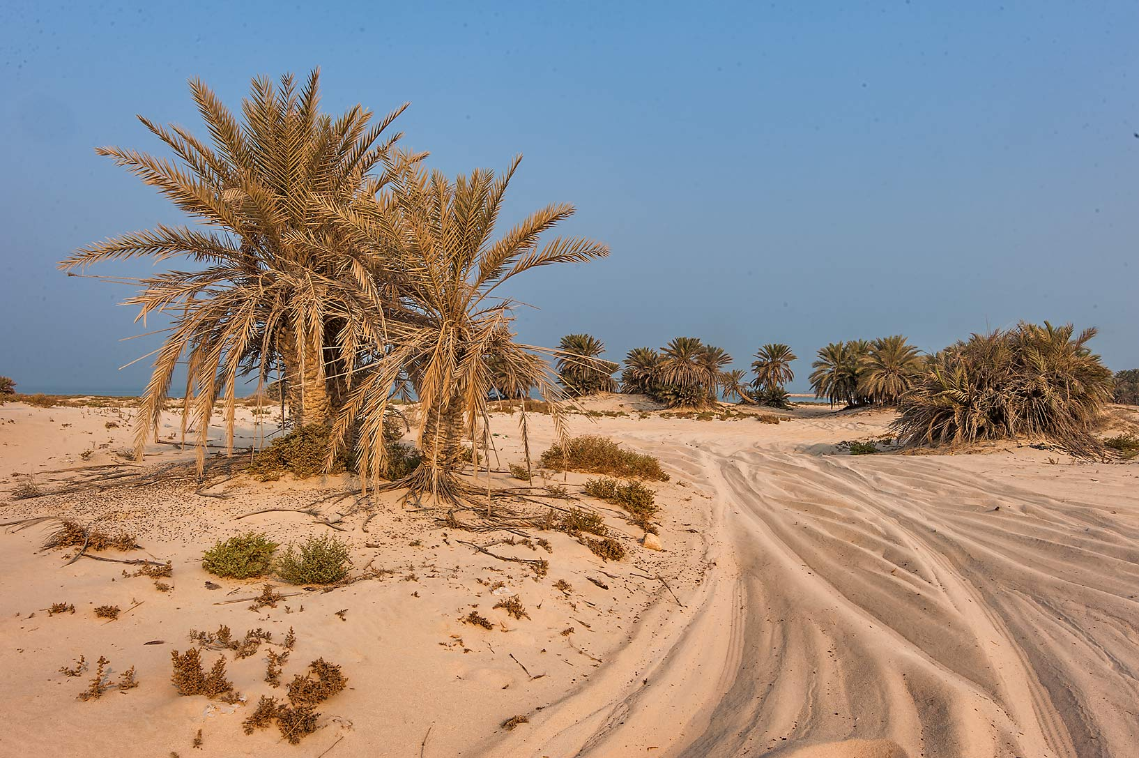 Sandy road along a beach in the area of Al Hamala...Well near Umm Bab. South-western Qatar