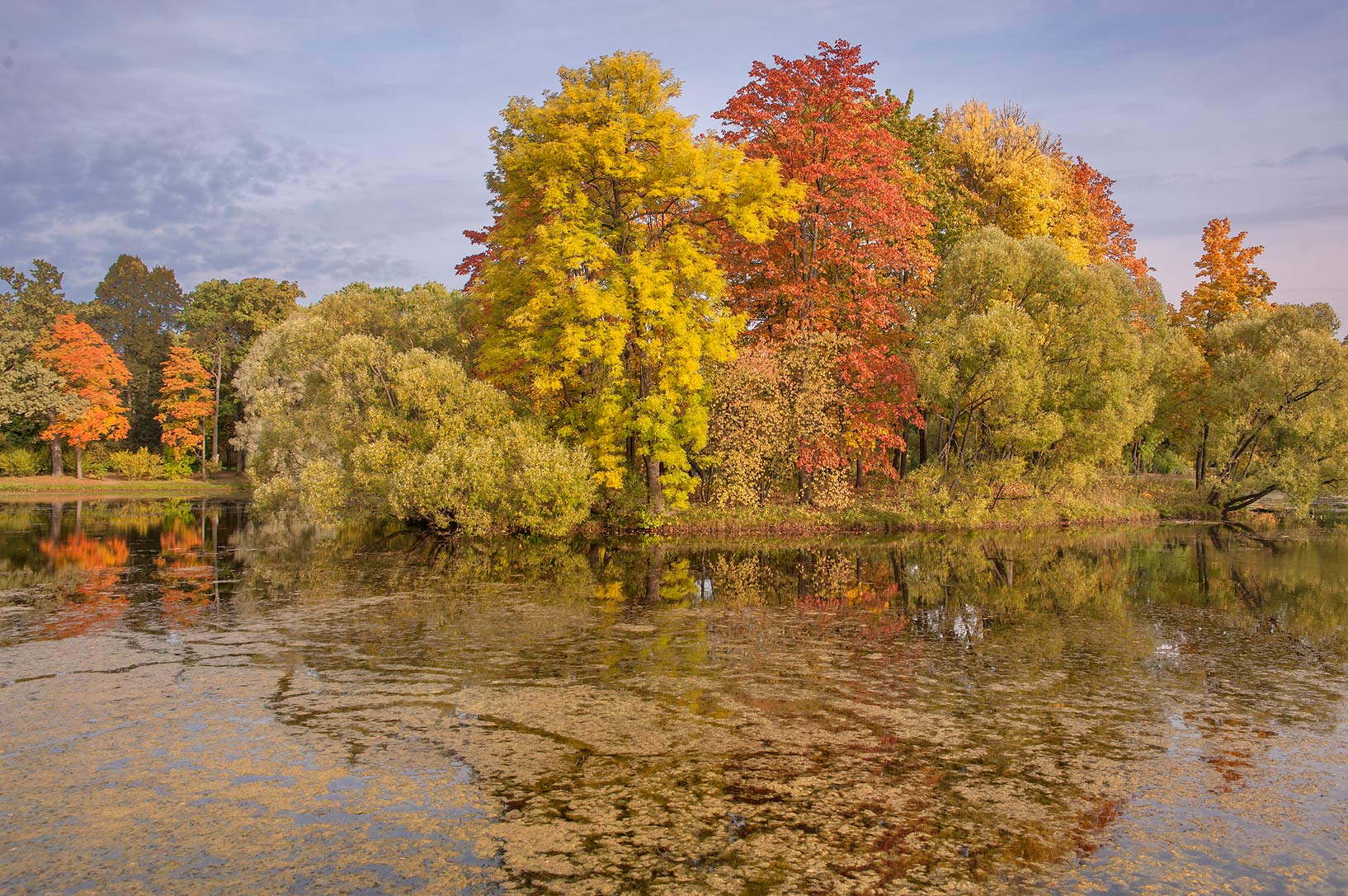 Fall foliage of Empty Island in Great Pond in...south from St.Petersburg, Russia