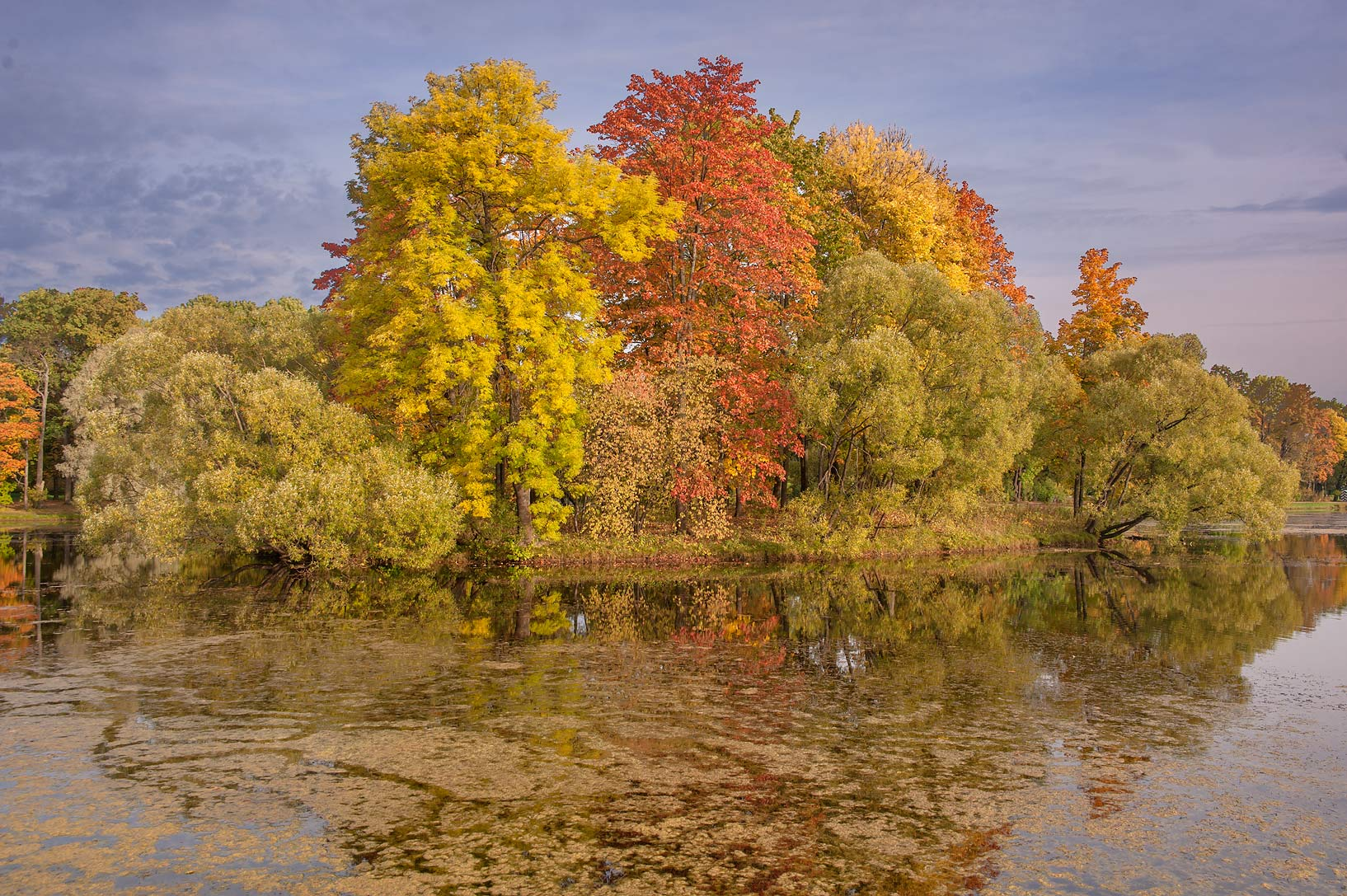 Fall foliage near Empty Island in Great Pond in...south from St.Petersburg, Russia