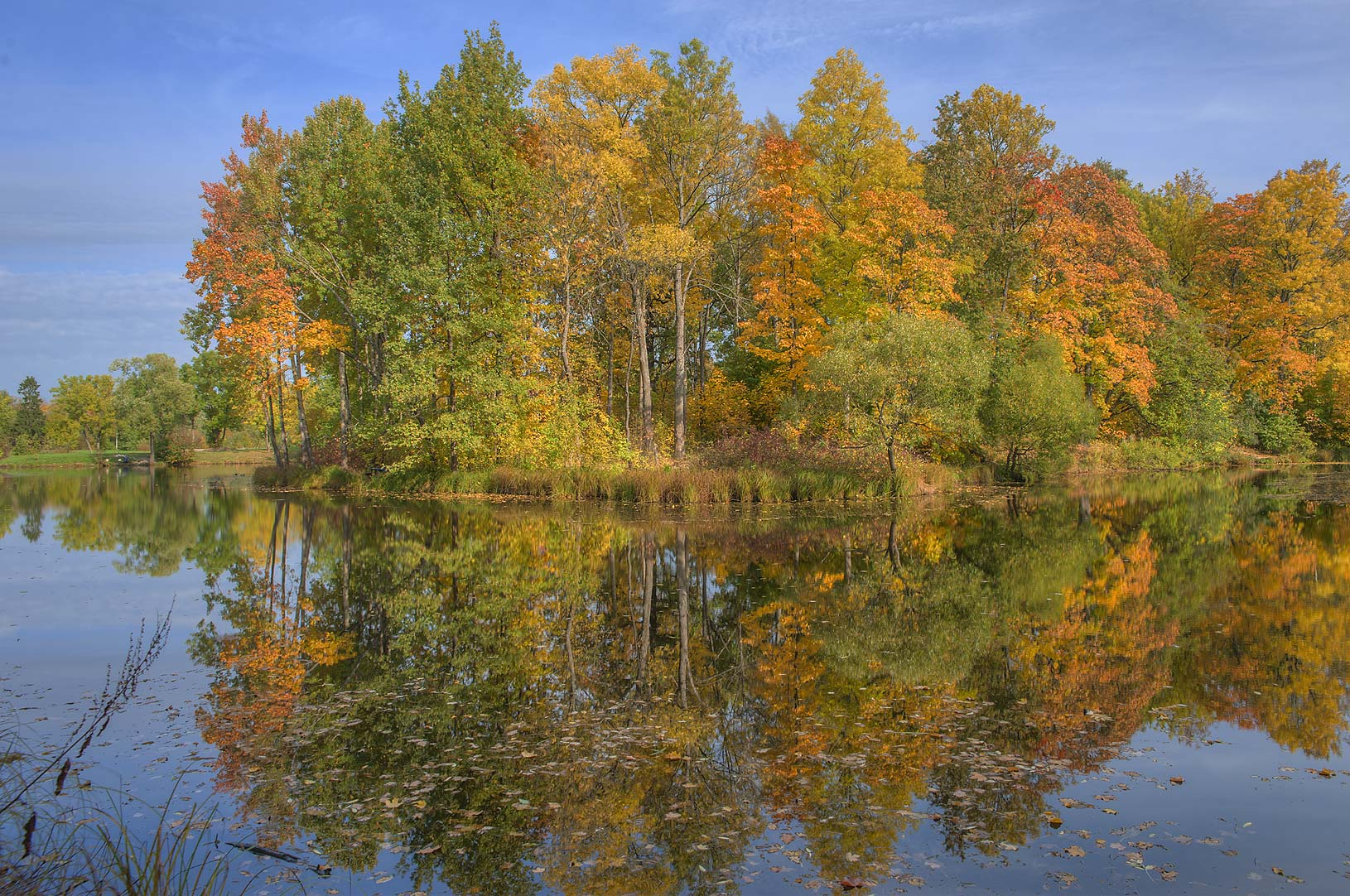 Fall colors of a bend of Lower Lamskiy Pond in...south from St.Petersburg, Russia