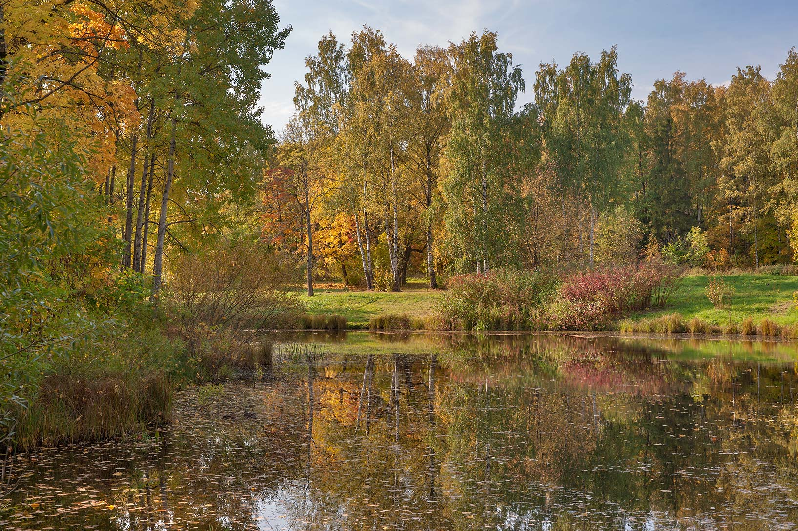 Northern section of Lower Lamskiy Pond in...south from St.Petersburg, Russia
