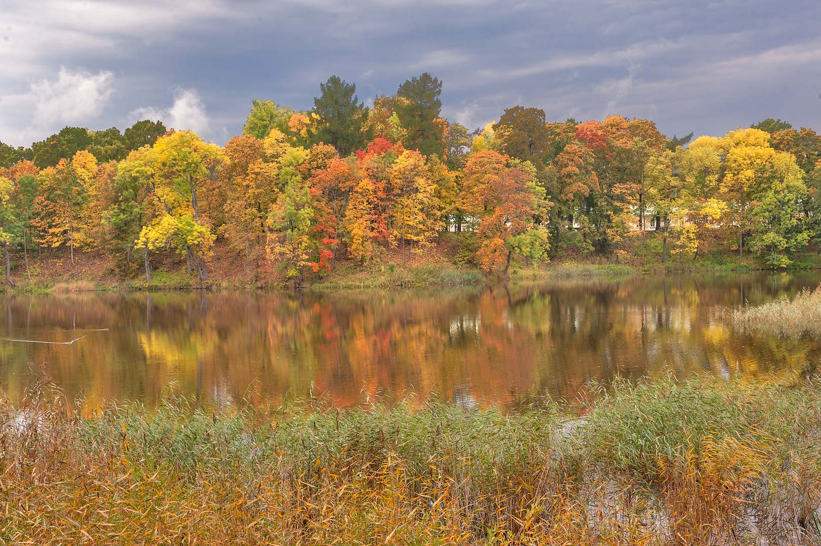 Fall colors of western shore of Lower Pond in the...a suburb of St.Petersburg, Russia