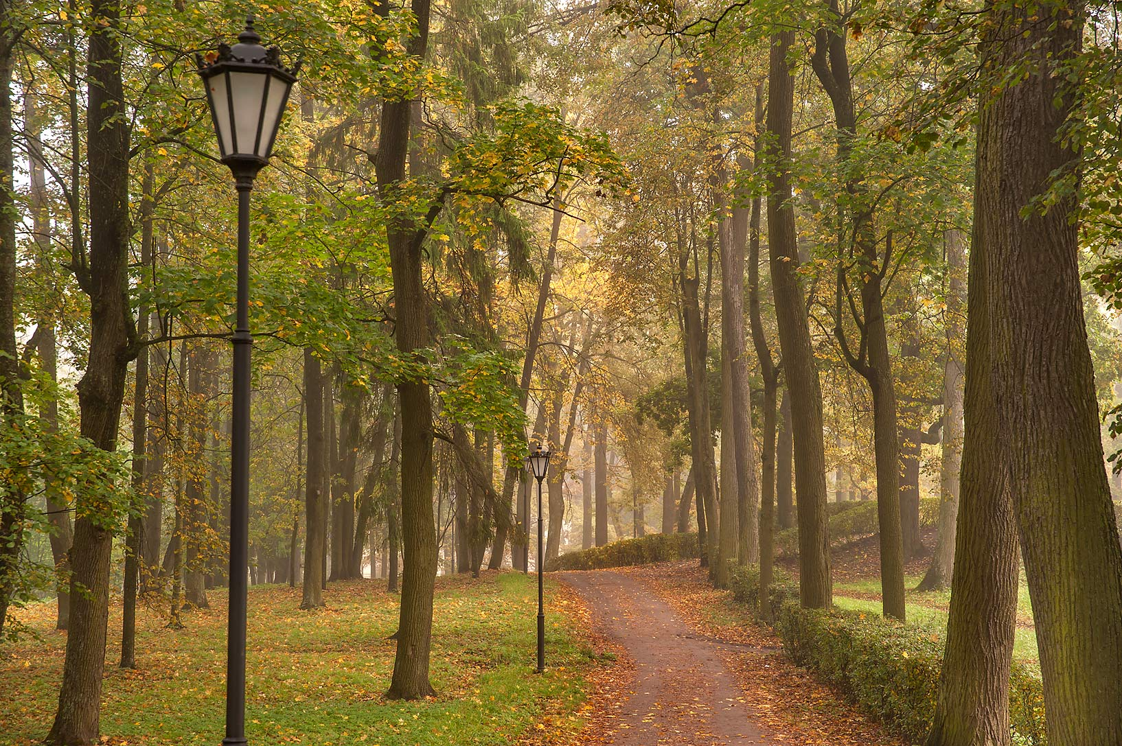 Alley on eastern shore of Beloe Lake in Gatchina, a suburb of St.Petersburg. Russia