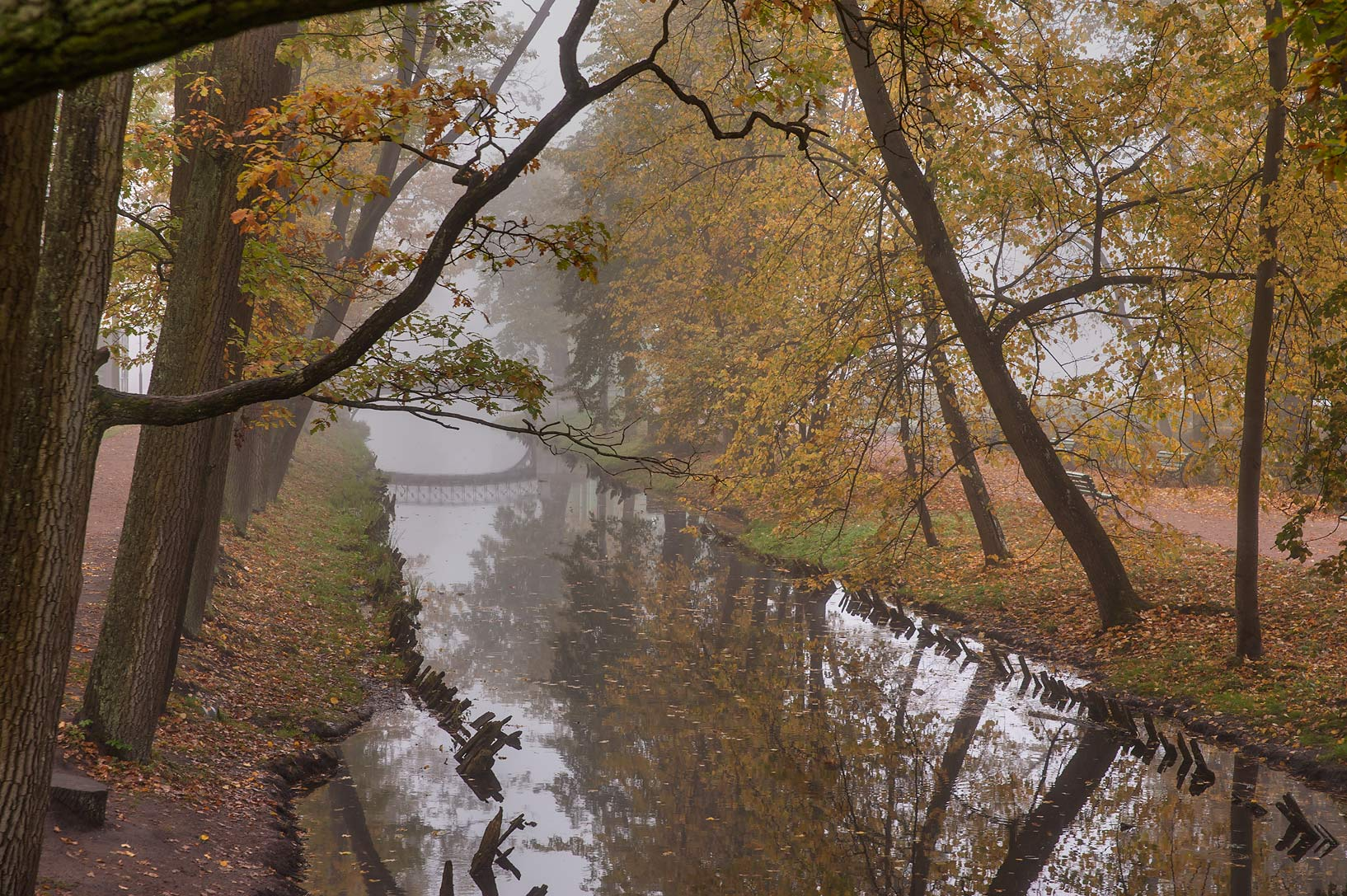 Canal in fog on Love Island in Gatchina, a suburb of St.Petersburg. Russia
