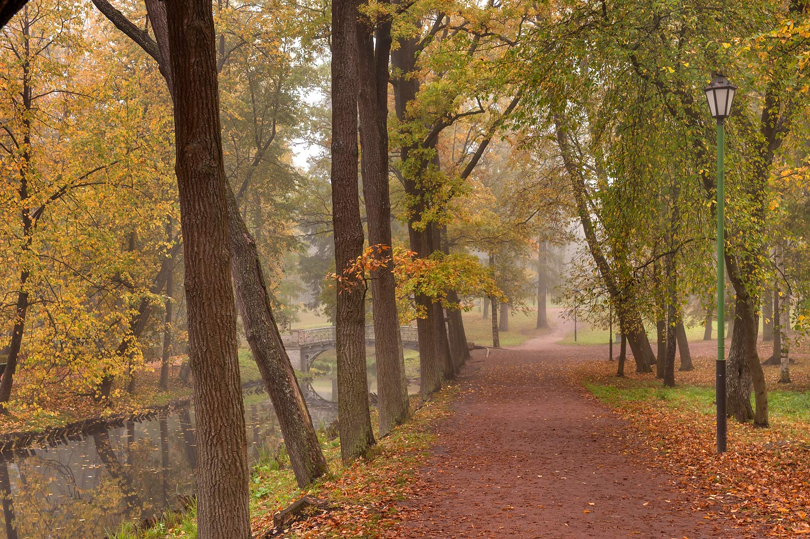 Alley in fog on Love Island in Gatchina, a suburb of St.Petersburg. Russia