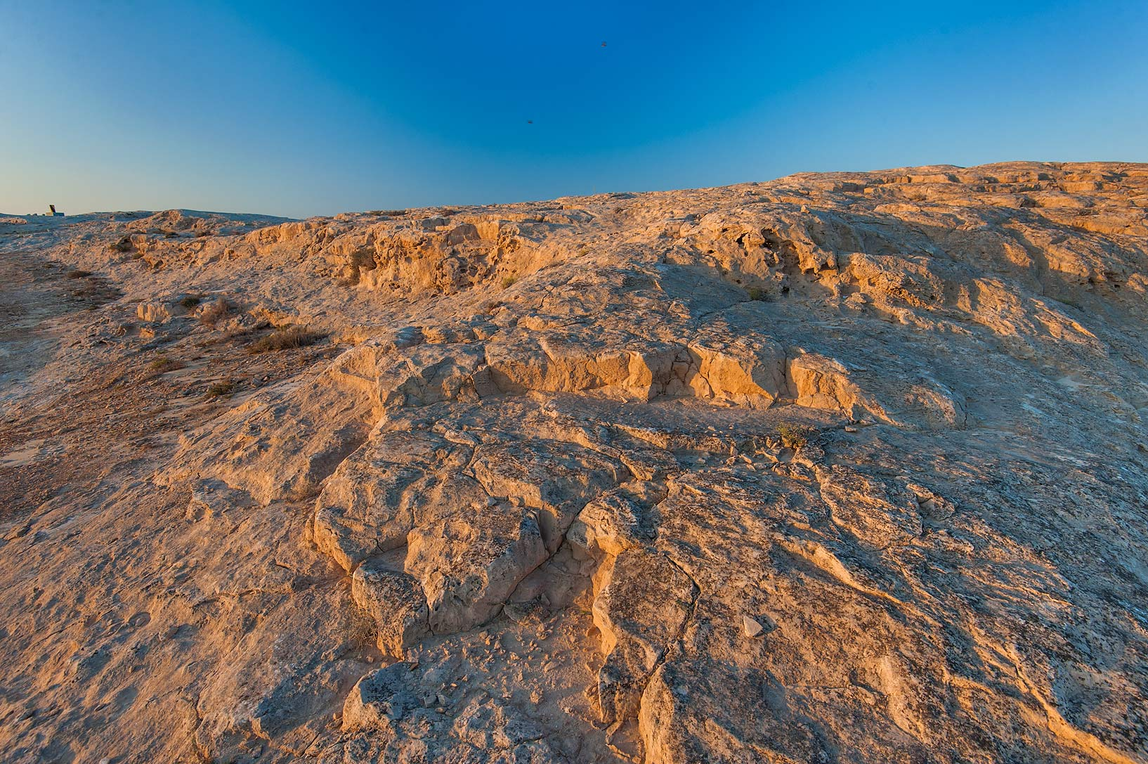 Texture of limestone hill of Jebel Fuwairit. North-eastern Qatar